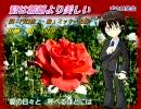 【氷山キヨテル】君は薔薇より美しい【布