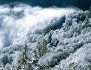 忙しい人のための粉雪