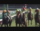 【競馬】 2008 キーンランドカップ タニノマティーニ 【ちょっと盛り】