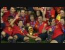 2010 FIFAワールドカップ 全145ゴール集 【決勝トーナメント篇】