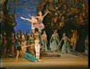 キーロフバレエ団 海賊 パ・ド・トロワ