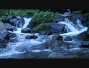 【癒し】夏を涼む動画【水流とひぐらし】