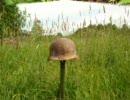 ドイツで戦争の残り物探し「遺棄兵器」