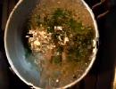 【料理】そこら辺の山菜食べてみた【雑草】