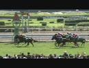 【競馬】 2010 小倉記念 ニホンピロレガーロ 【ちょっと盛り】