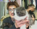 【peercat】神聖かまってちゃん ネオニー動画(1/2)