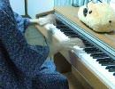 【弾いてみた】マトリョシカ【音質改善ver】