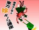 魔理沙と学ぶ東方珍キノコ講座3