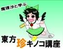 魔理沙と学ぶ東方珍キノコ講座9