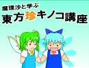 魔理沙と学ぶ東方珍キノコ講座10