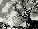 【KAITO】鈍色空に花吹雪【オリジナル】