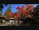 2010年紅葉の京都に行ってきた(2)【西明寺、高山寺】