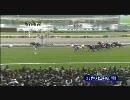 【競馬】2010 エリザベス女王杯 スノーフェアリー