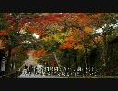 2010年紅葉の京都に行ってきた(3)【三千院】