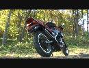 【バイク動画関ヶ原合戦】VT250FEの排気音が流れるだけ