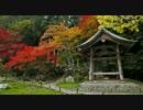 2010年紅葉の京都に行ってきた(4)【実光院~】