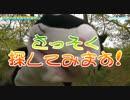 河原の遊歩道で松茸狩り