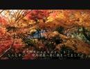 2010年紅葉の京都に行ってきた(9)【大原野神社~】