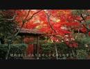 2010年紅葉の京都に行ってきた(17)【厭離庵~】