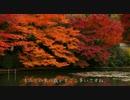 2010年紅葉の京都に行ってきた(19)【広沢池~】