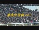 第36位:2010年 第56回東京大賞典(JpnI)
