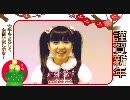 AKB48佐藤すみれ2011年の抱負