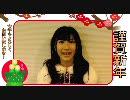 AKB48石田晴香2011年の抱負