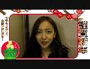 AKB48板野友美2011年の抱負