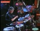 Steve Gadd - Crazy Army