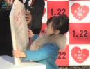 芦田愛菜、38匹のワンちゃんに囲まれてび