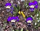【UTAUカバー】花~すべての人の心に花を~【デ4】