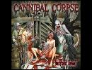 高音質洋楽メタル紹介【24】 Cannibal Corpse - Psychotic Precision thumbnail