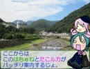 【DAJO☆戦国巡礼ツアー】北条早雲と後北条家 北条篇⑤【はちゅね】