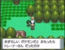【作業用BGM】ポケモン ハクタイの森
