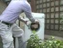 【超展開】洗濯機に石のブロックを入れてみた【大惨事】