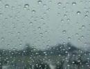 【雨】03 Gentle Rain,Soothing Sounds o
