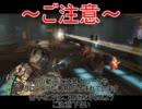 日本発禁ホラーゲーム DEADSPACE2 実況プレイ 【日本語字幕付き】 ~Part14~