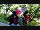 【みんなで】ハピシン踊ってみたよ【れいちぇるポーズ】 thumbnail