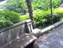 旧渋沢庭園を歩いてみた