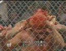 【WWE】金網戦/ リック・フレアー vs ラ
