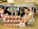 【新唐人】大地震で明らか 日中の建築の差