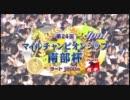 【競馬】2011年マイルチャンピオンシップ南部杯【被災地支援競走】