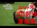 2011年 プロ野球 激痛集