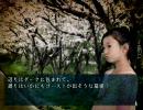 四八(仮) 沖縄県シナリオ「花見」