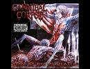 高音質洋楽メタル紹介【323】 Cannibal Corpse - Hammer Smashed Face