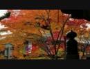 2011年紅葉の京都・滋賀に行ってきた(13)【今熊野観音寺~】