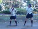 【桜】galaxias!を踊ってみました【香】