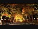 2011年紅葉の京都・滋賀に行ってきた(20)【日吉大社】