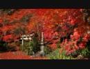 2011年紅葉の京都・滋賀に行ってきた(25)【大河内山荘~】