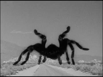 世紀の怪物 / タランチュラの襲撃』 タランチュラの最期 - ニコニコ動画